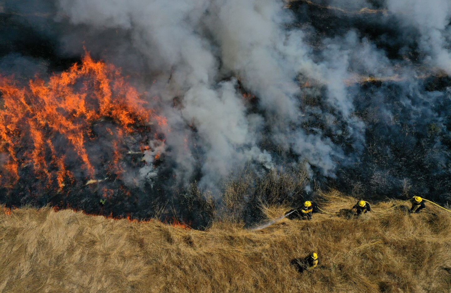 Firefighters in a field of tall grass look down on a fire and smoke.